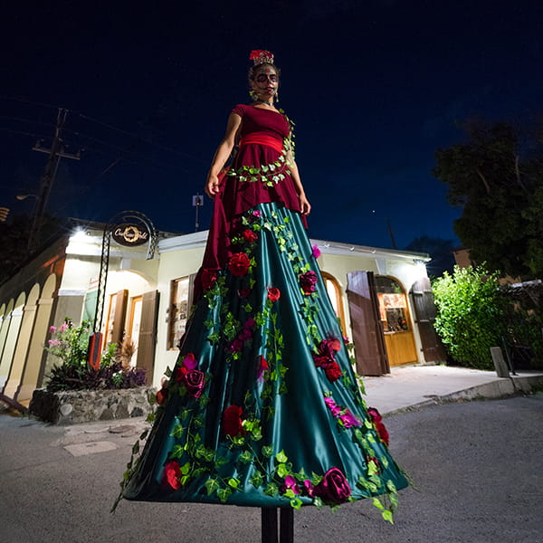 St. Croix Stilt Walker - Costumed Character